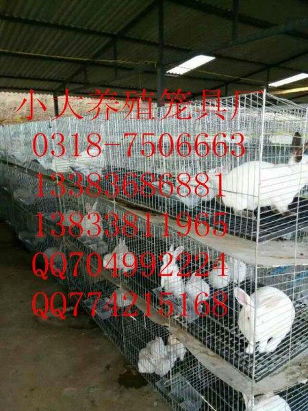 养鸡设备 养兔设备 养鸽设备 鸡鸽兔笼 养殖用具 养殖配件