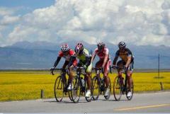 青海湖骑行租自行车-青海湖启程自行车出租2017年150辆全
