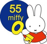 代理miffy米菲纸尿裤最关心的三大问题