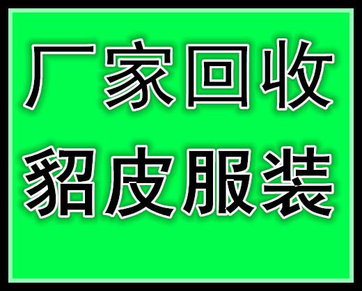 上海收貂皮的上海收皮草的上海回收貂皮的