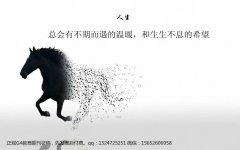 2017年教育期刊《中国教师》征稿