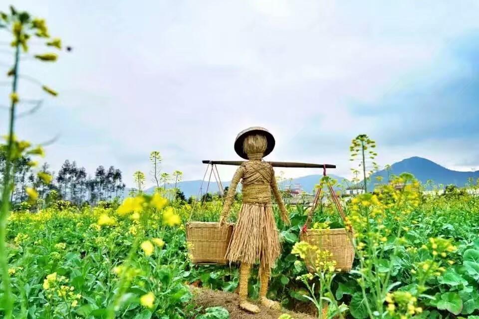 深圳亲子活动中学生户外活动赏花植树活动,农家乐推荐项目