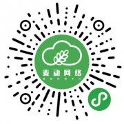 【抚顺麦动网络】微信小程序开发,PC建站,手机网站