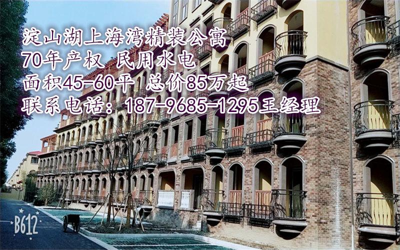 淀山湖现房上海湾70年产权精装公寓首付35万起!
