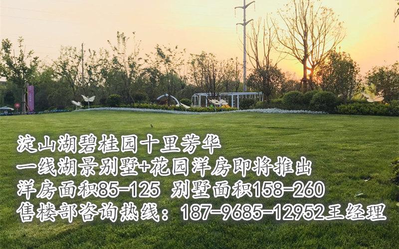 碧桂园十里芳华开盘了,一线湖景别墅+花园洋房200万起