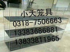 鸡笼子鸽笼子兔笼子鸭笼子狐狸笼鹌鹑笼宠物笼貉子笼鸽子笼兔子笼
