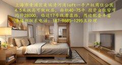 漕盈路地铁站旁美瑞loft公寓首付55万起