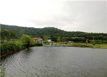 怎么回事,武汉乐农生态园把公司团队拓展做成这样还有那么多人去