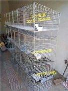 鸡笼鸽子笼兔子笼鸟笼狗笼猫笼宠物兔笼鹌鹑笼狐狸笼貉笼兔笼鸽笼